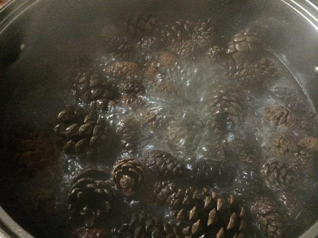 松ぼっくり下処理防虫処理煮沸