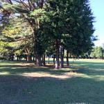 気象台公園2
